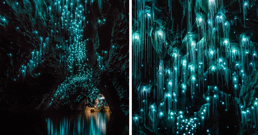 glow-worms-limestone-caves-shaun-jeffers-beautiful-new-zealand-raw.png